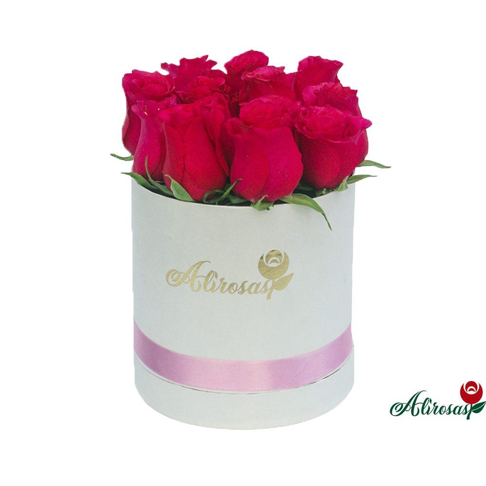 Alirosas . rosas