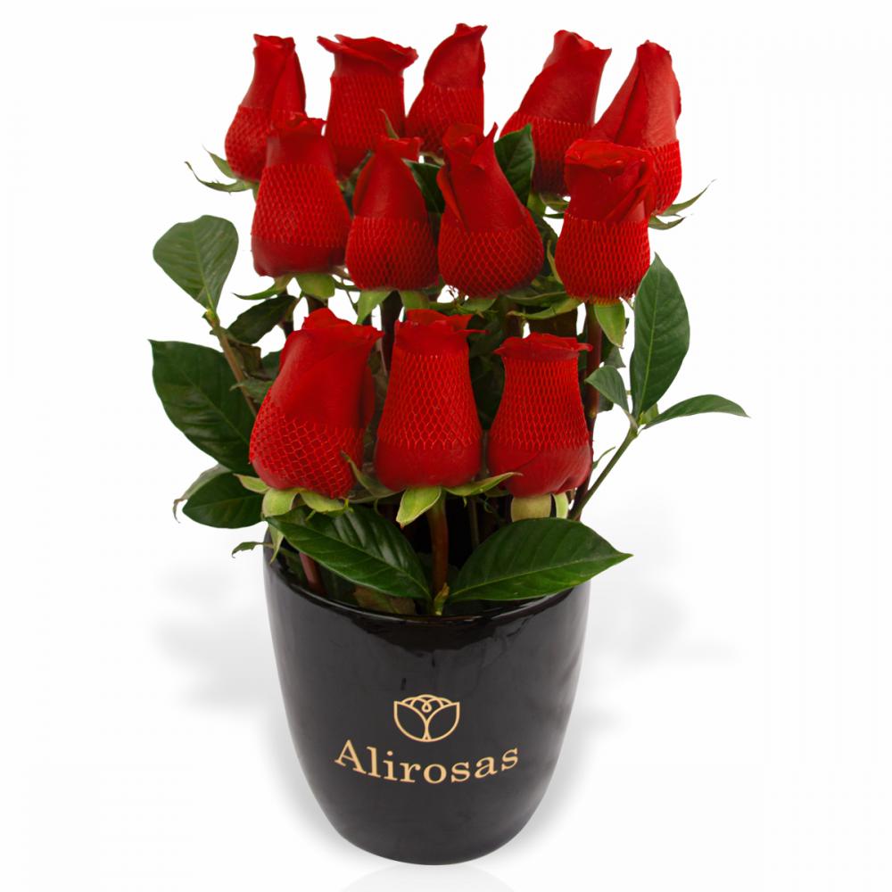 florero negro de 12 rosas y anturios delivery envio arreglo
