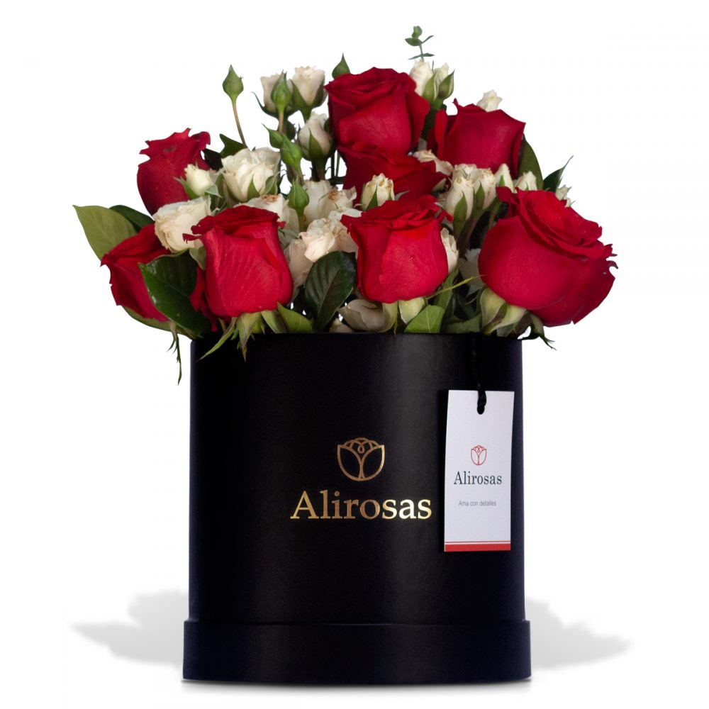 Box de Rosas y Minirosas