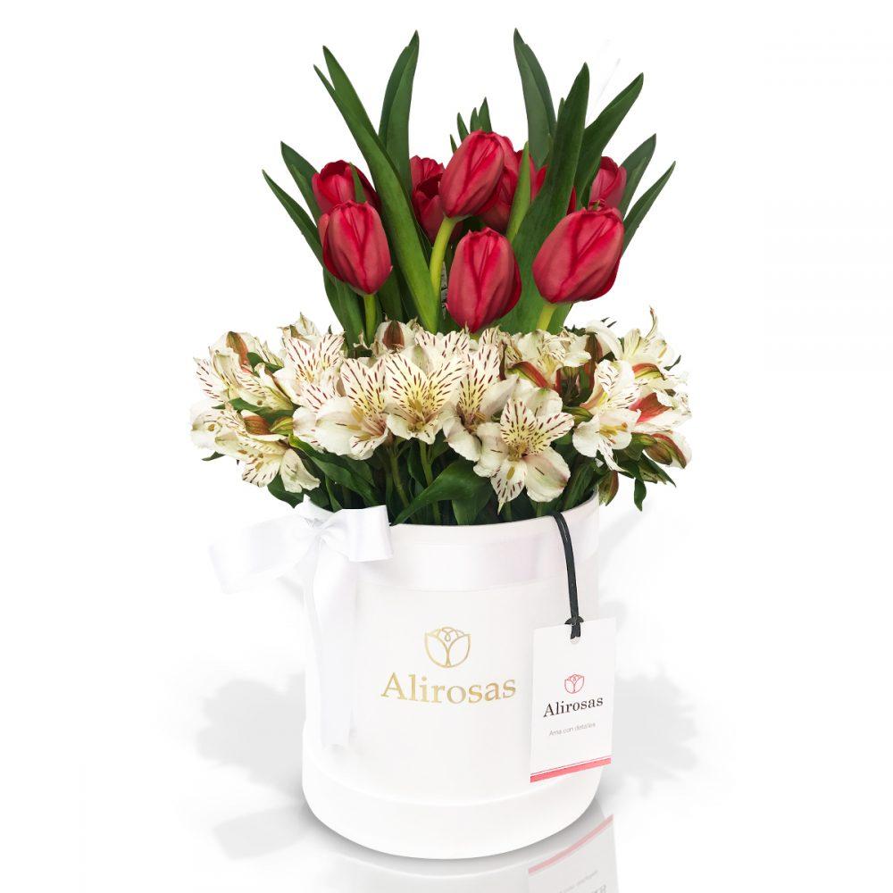 Box de 10 tulipanes rojos
