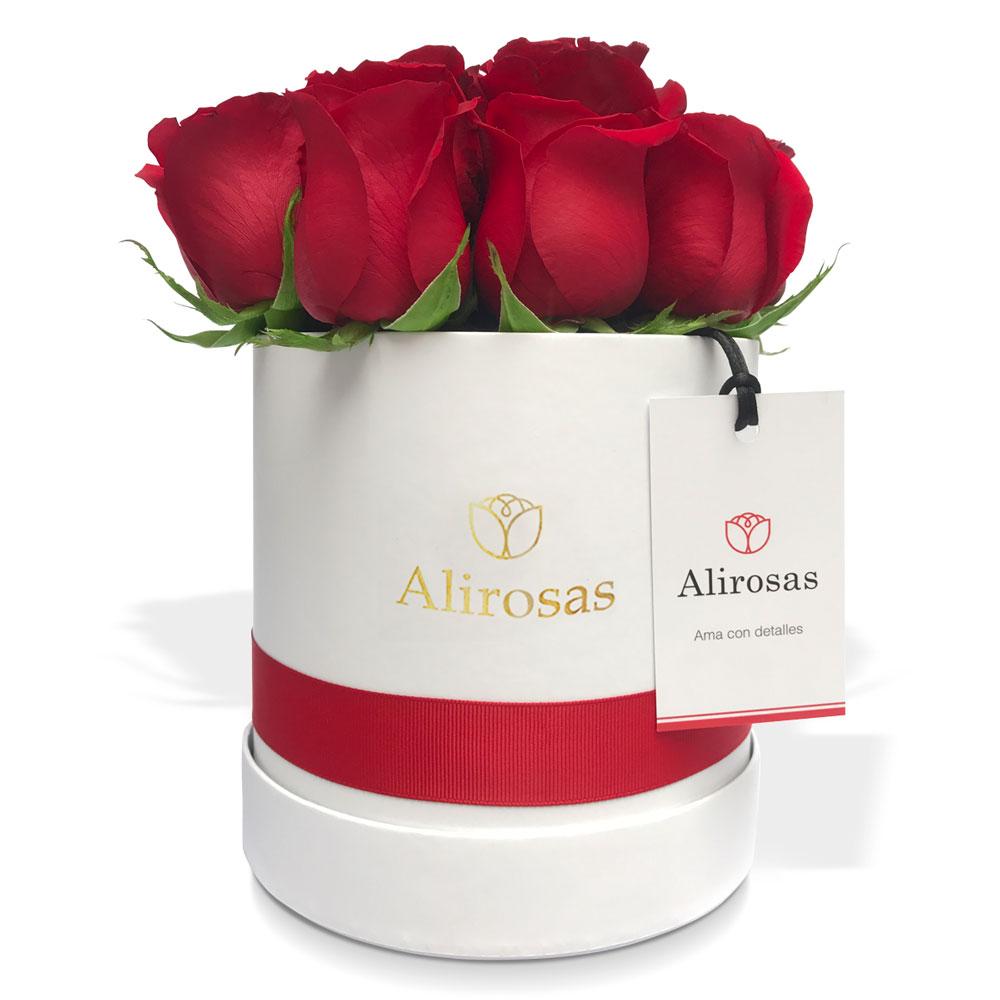 Box de 6 Rosas rojas